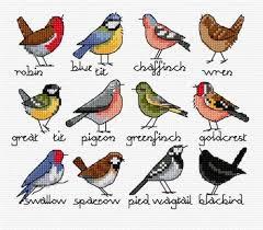 Twelve Garden Birds Cross Stitch Chart Download Sewandso