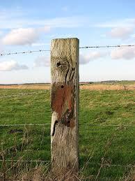 Fence Post Fix A Fence Post Nongzico