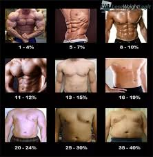 What Diet Plan Should I Follow To Reduce Body Fat Percentage