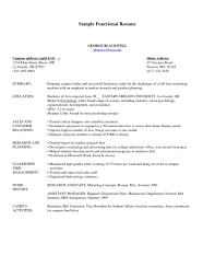 example functional resume combined resume template functional example functional resume