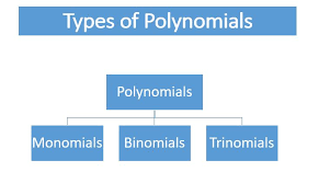 Classifying Polynomials By Degree And Number Of Terms Chart Types Of Polynomials Monomial Binomial Trinomial Cbse
