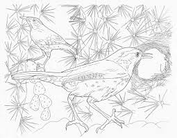 Complicated Animal Coloring Pages At Getdrawingscom Free For