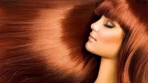 Строение кожи головы и волос особенности физиология функции Женские волосы