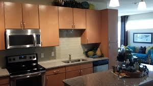 Brands Of Kitchen Cabinets The Fame Frameless Kitchen Cabinets Kitchen Ideas