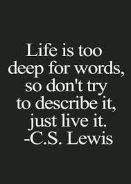 Philosophical Quotes About Life Interesting Philosophical Quotes For Life Philosophical Quotes About Life