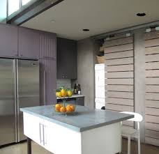 Purple Kitchen Cabinet Doors Diy Cabinet Door Ideas Kitchen Contemporary With Fruit Holder