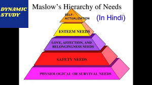 Maslow Hierarchy Of Needs Maslows Hierarchy Of Needs In Hindi