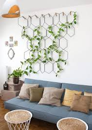 Best Inspirations To Make Indoor Wall Climbing Plants  Indoor Climbing Plants Indoor