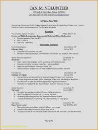 Microsoft Word Free Resume Templates Elegant Make Free Resume Luxury