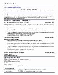 Bank Proof Operator Sample Resume It Project Manager Resume Sample