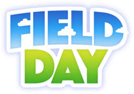 Image result for field day pictures