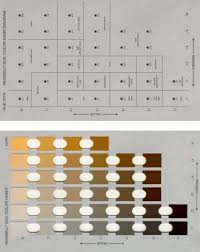 Example Pages From Munsell Color Charts For Illustrative