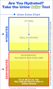 Medical Urine Color Chart Us Army Public Health Command Urine Color Hydration Chart