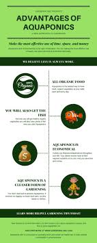 23 best Compost and Composting images on Pinterest   Back garden ...