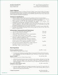 Resume Sample Developer Valid Virtual Assistant Resume Samples