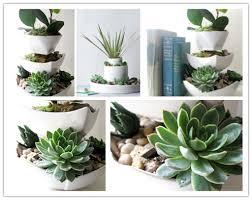 desk garden.  Garden How To Make Vertical Succulent Desk Garden Step By DIY Tutorial  Instructions And Desk Garden