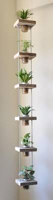 diy creative hanging plants mason jar with wooden holders green indoor plants terrarium crafts