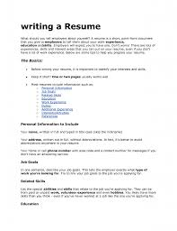 Things To Include On A Professional Resume For College Resume