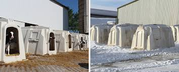 which have clean dry bedding like straw for them to nestle in and doors that may be temporarily shut to protect them from cold weather and wind