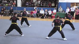 Southern fist martial art kung fu