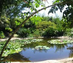 san go botanic garden encinitas 2018 all you need to know before you go tripadvisor