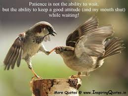 funny patience quotes inspiring quotes inspirational  patience quotes famous quotations about patience best quotes