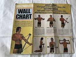 Original Bullworker Exercise Chart Bullworker X5 35 00 Picclick Uk