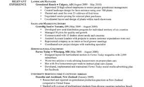 Good Resume Templates Good Resume Templates Free Best Example Resume Cover Letter 76