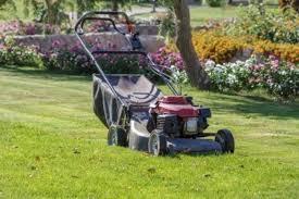 2018 honda lawn mowers. simple mowers best petrol lawn mowers 2018 review with honda lawn mowers e