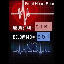 Heart Rate Gender Prediction The Gender Experts