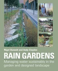 Small Picture Rain Gardens Managing Water Sustainably in the Garden and