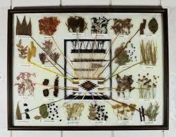 Navajo Dye Chart Sold