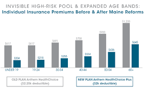 Pre Existing Condition Chart Invisible High Risk Pools How Congress Can Lower Premiums