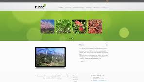 Provo Web Design Web Design Gallery