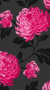 hot pink flowers wallpaper. Fine Hot Flowers Throughout Hot Pink Wallpaper P