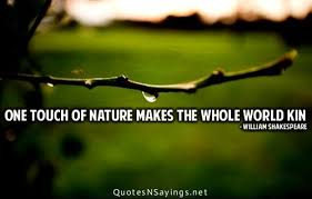 Best Nature Quotes Amazing 48 Best Quotes About Nature Nature Quotes QuotesOnImages