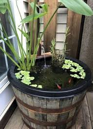 ponds backyard small water gardens