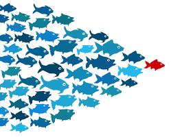 the mighty soft skill jobisjob blog leadershipsmall