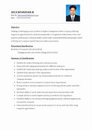 Nice Resume Formats Format For Freshers Beautiful In Word Examples