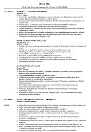Sales Support Resume Samples | Resume Sample Ideas