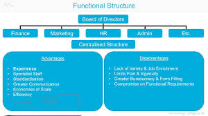 Functional Organizational Chart Functional Organisational Structure A Z Of Business Terminology