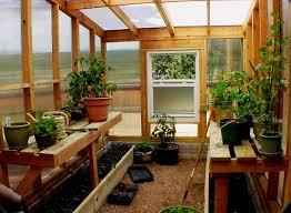 Best 25 Indoor Greenhouse Ideas On Pinterest  Indoor Herbs Diy Buy A Greenhouse For Backyard