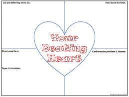 Frayer Model Map Cardiovascular Heart Frayer Model Notes By Outlawed