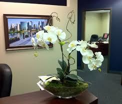 Office Flower Simple Elegant Orchids For A Reception Desk Fall Flower