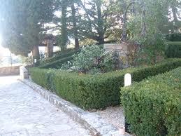 La finestra di stefania giardino italiana bosso siepe la