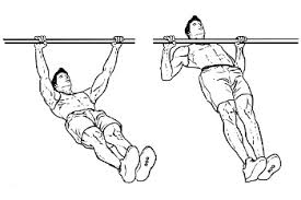 inverted rows biceps workout at home
