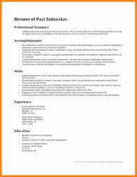 How To Write A Professional Summary On A Resume Examples Example Professional Summary Savebtsaco 4