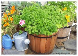 herb planters are ideal for smaller herb gardens