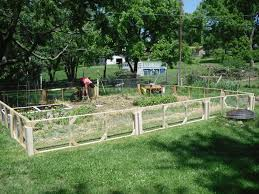 great ideas for convenient landscaping fence plans