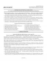 Resume Managementesumes Examples Executive Summary Senior It